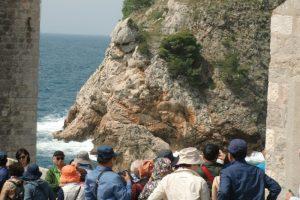 Die Schlapphut-Lemminge von Dubrovnik