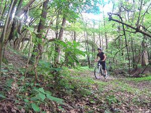 Das Aquädukt mitten im Wald
