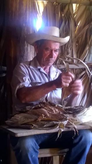 Ein Plantagenleiter baute eine Zigarre für uns