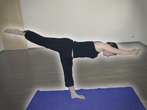 Bikram Yoga Test, Bikram Yoga, Test, Wien, Erfahrungsbericht