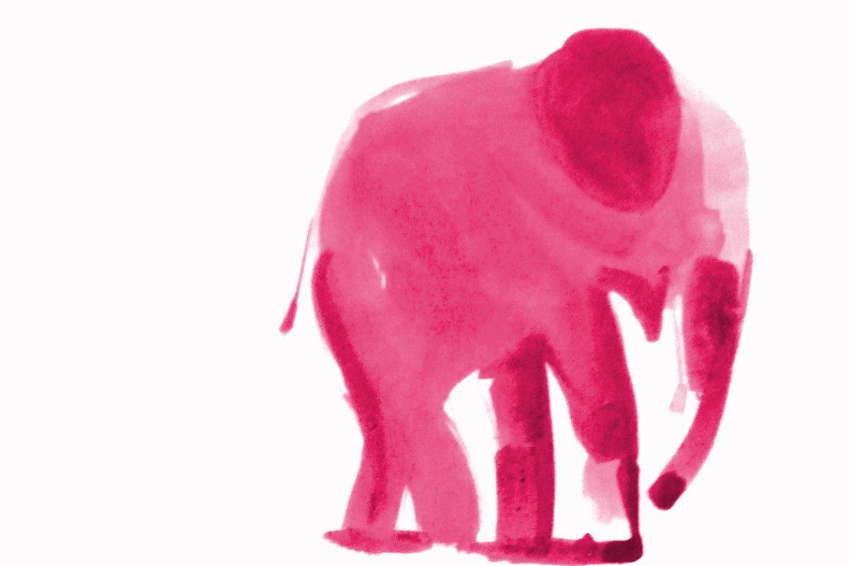 Martin Suter: Ein kleiner, rosaroter Elefant ganz groß