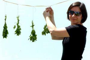 Kräuter trocknen – 5 Tipps für duftende Aromen das ganze Jahr