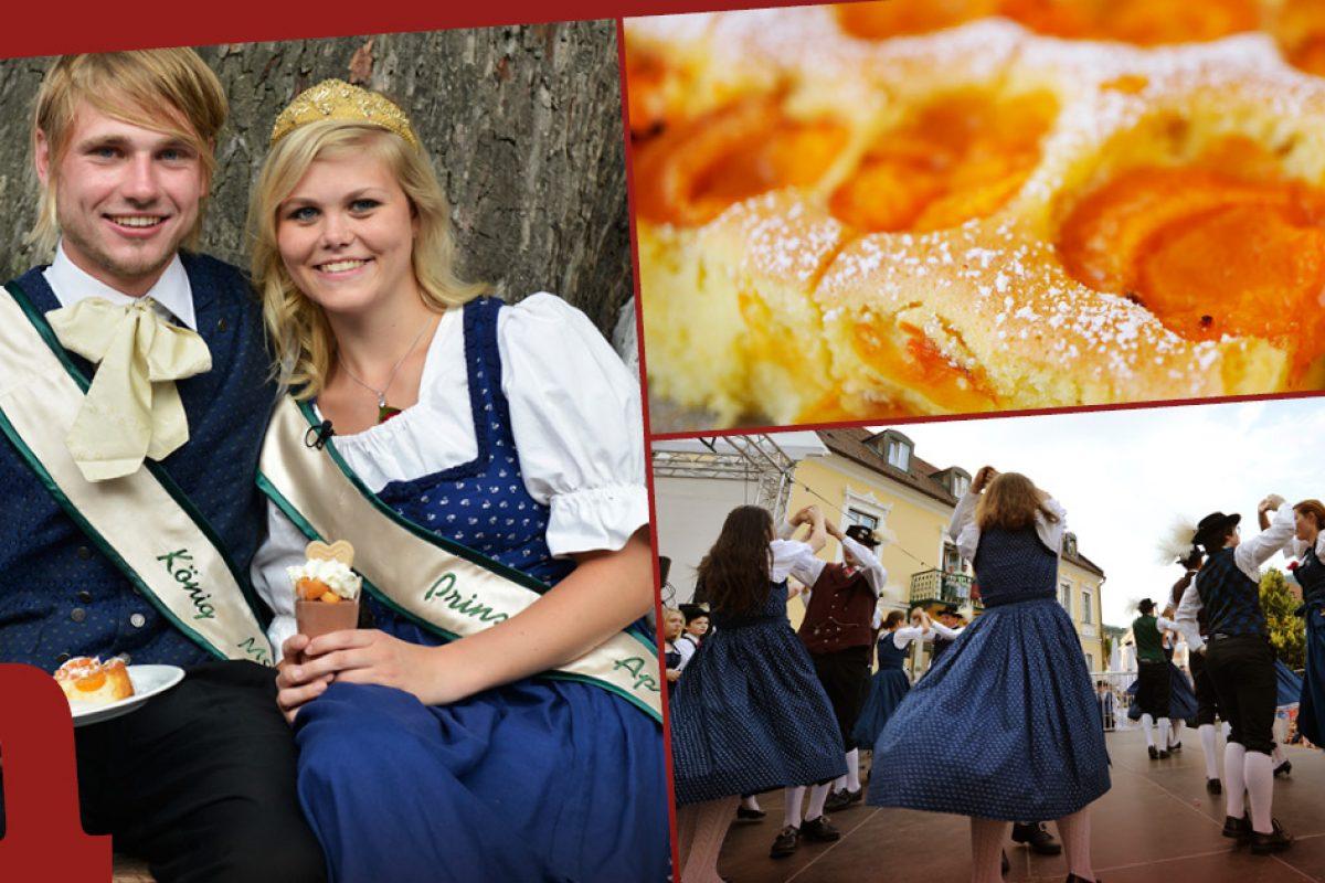 Hoch lebe Aprikosia! Alles Marille in Krems und Spitzer Marillenkirtag