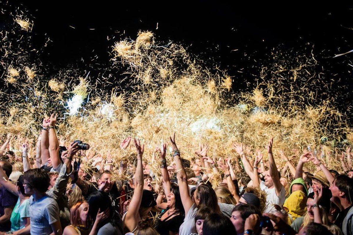 Acoustic Lakeside – das wahrscheinlich beste Festival Österreichs