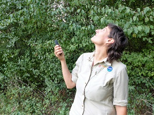 bat-detektor, fledermauswanderung, nationalpark donau-auen, , nationalpark, donau-auen, rangerin, eva pölzl
