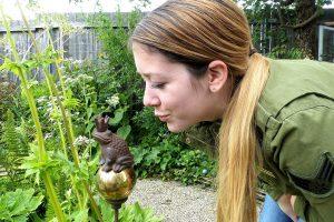 Österreichs größter Garten-Event! Die Gartenbaumesse in Tulln