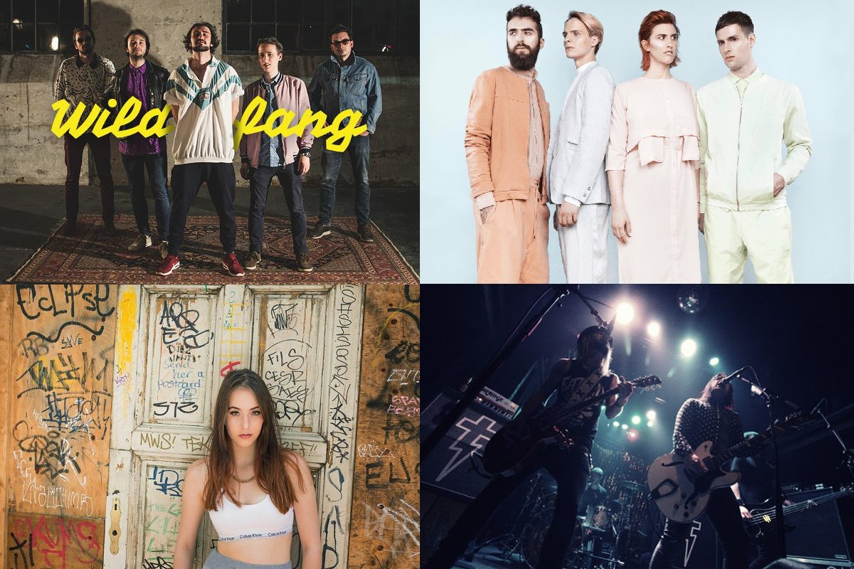 Gürtel Nightwalk 2017 – zig Musik-Highlights an nur einem Tag!