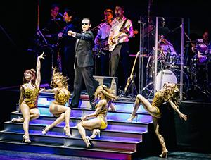 Falco, Musical, Falco - das Musical, Show, Bühne, Band