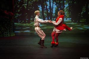 der kleine Prinz, Musical, Fuchs, Tanz