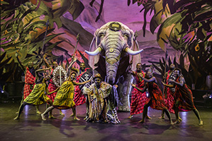 afrika, elefant, show, tanz, westafrika
