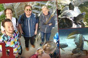 Schloss Orth – ein Tag mit Wasserdrachen & Sumpfschildkröten