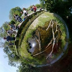 schlossinsel, nationalpark, zentrum, orth, gehege, sumpfschildkröten, little planet