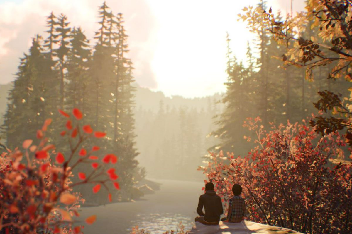 Life is Strange 2 Review – ein bisschen hölzern Into The Wild