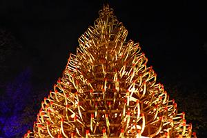 weihnachtsdorf, altes akh, unicampus, schlitten, baum, treffpunkt