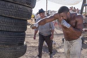 Rocky, Sylvester Stallone, Adonis Creed, Michael B Jordan, Training, Reifen