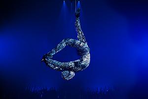 Cirque Du Soleil, Totem, Akrobaten, Zirkus, Events