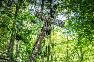 Friedhof der Kuscheltiere, Kreuz, Pet semetary, Wald,