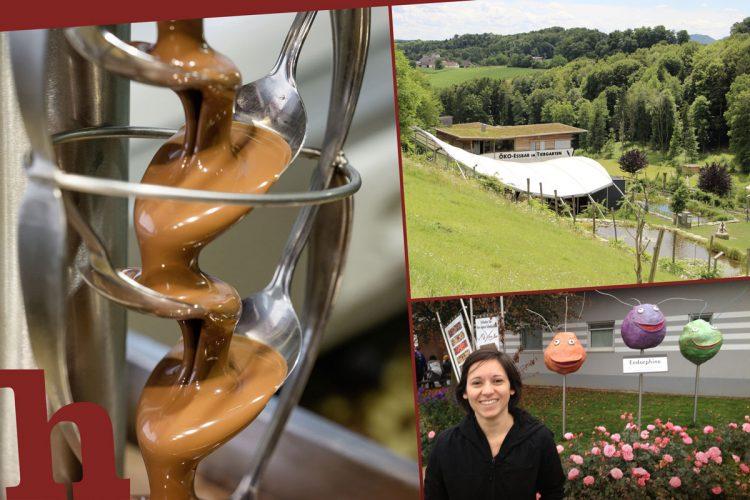 Zotter Tour: So genial ist ein Tag im Schokolade-Paradies