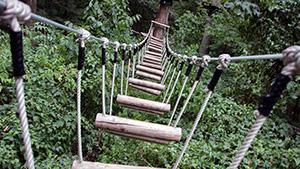waldseilpark kahlenberg, klettern, parcours, route, kletterpark, wienerwald, hängebrücke
