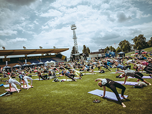 yoga, workshop, vinyasa, stadion hohe warte