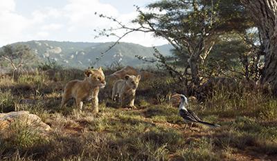 lion king, könig der löwen, simba, nala