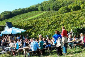 Wiener Weinwandertage 2019 – 3 Bezirke, 3 Routen, 2 Tage