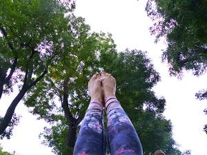 Yoga, Bäume, Zehen, Baumwipfel