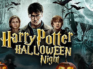 harry potter halloween night, event arena vösendorf, 2019