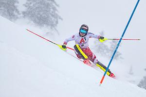 ÖSV, Manuel Feller, Skirennen, Hahnenkamm, Streif