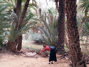 Berge, Oase, Ait Mansour, Marokko, Süden, Marrakesch Ausflugstipps