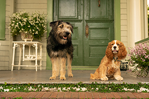 live action reamke, disney+, lady and the tramp