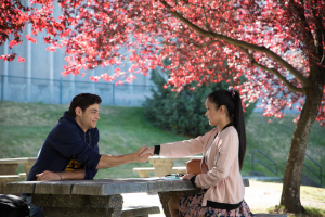 To all the boys i've loved before - eine der Netflix-Hits von denen es die Buchvorlage als eBook gibt