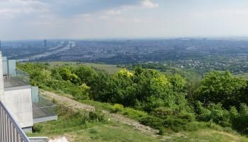 Ausblick, Geländer, Bäume, Wien, Kahlenberg