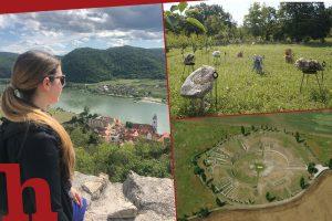 22 tolle Ausflugsziele rund um Wien: Das wartet auf dich in NÖ!