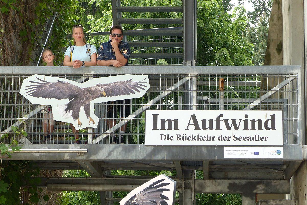 Seeadler! Ausstellung nahe Wien gibt tolle Einblicke