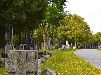 Einer der schönsten Orte im Herbst in Wien ist der Zentralfriedhof.