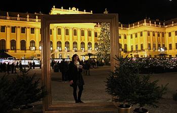 weihnachtsmarkt, schloss schönbrunn, wien