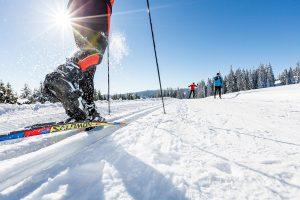 Langlaufen in Niederösterreich – 10 tolle Gebiete für jedes Können