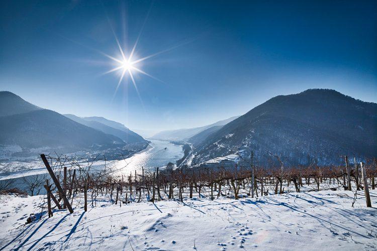 Winterwandern in der Wachau – 3 Routen im Weltkulturerbe