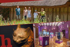 MAMUZ Schloss Asparn/Zaya: Die Ausstellungen & Kurse 2021