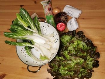 Adamah Rezeptkistl im Test, Zutaten für die Mangold-Pizza mit Eichblattsalat