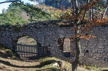 Ruine Schrattenbach, Tür, Mauer, Fenster