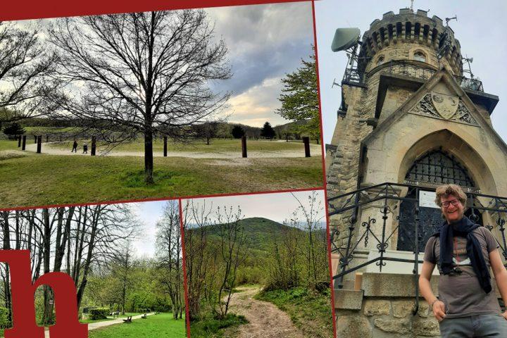 Wiener Stadtwanderweg 2: Ein toller Trip zum Hermannskogel