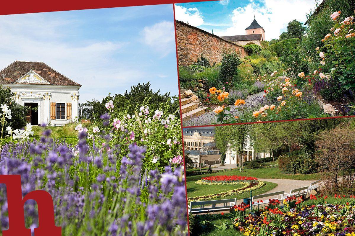 Die schönsten Gärten und Parks Niederösterreichs im Überblick