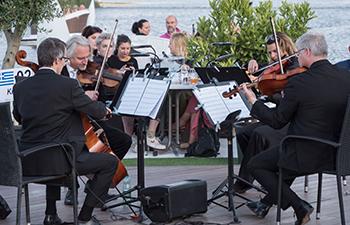 wiener klassik, streichquartett, vienna strings, floating concerts