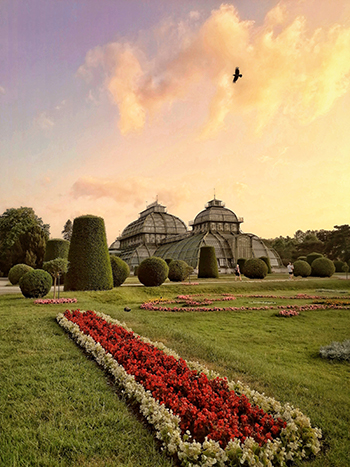 palmenhaus, schönbrunn, treibhaus, aussenansicht, sommer, blumenbeete, abendrot, sonnenuntergang, fotomotiv, wien,