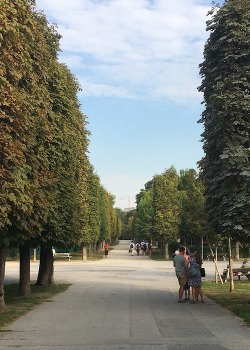Die Baumallee im Augarten, Wien, Herbst