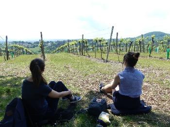 Kahlenberg, Picknick, Aussicht, Frauen