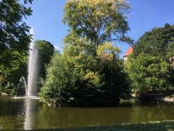 Türkenschanzpark, Wien, Grün, Teich, Oase