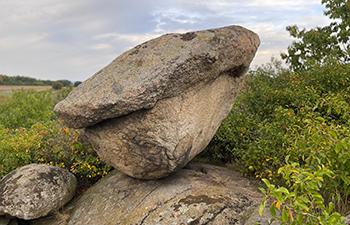 granit, witterung, schwammerl